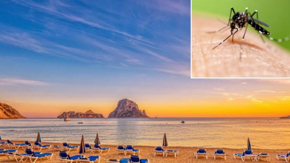 https://pochivka.blitz.bg/media/thumbs/202005/950/1590732379_ibiza_mosquitos.jpg?_=1590732544